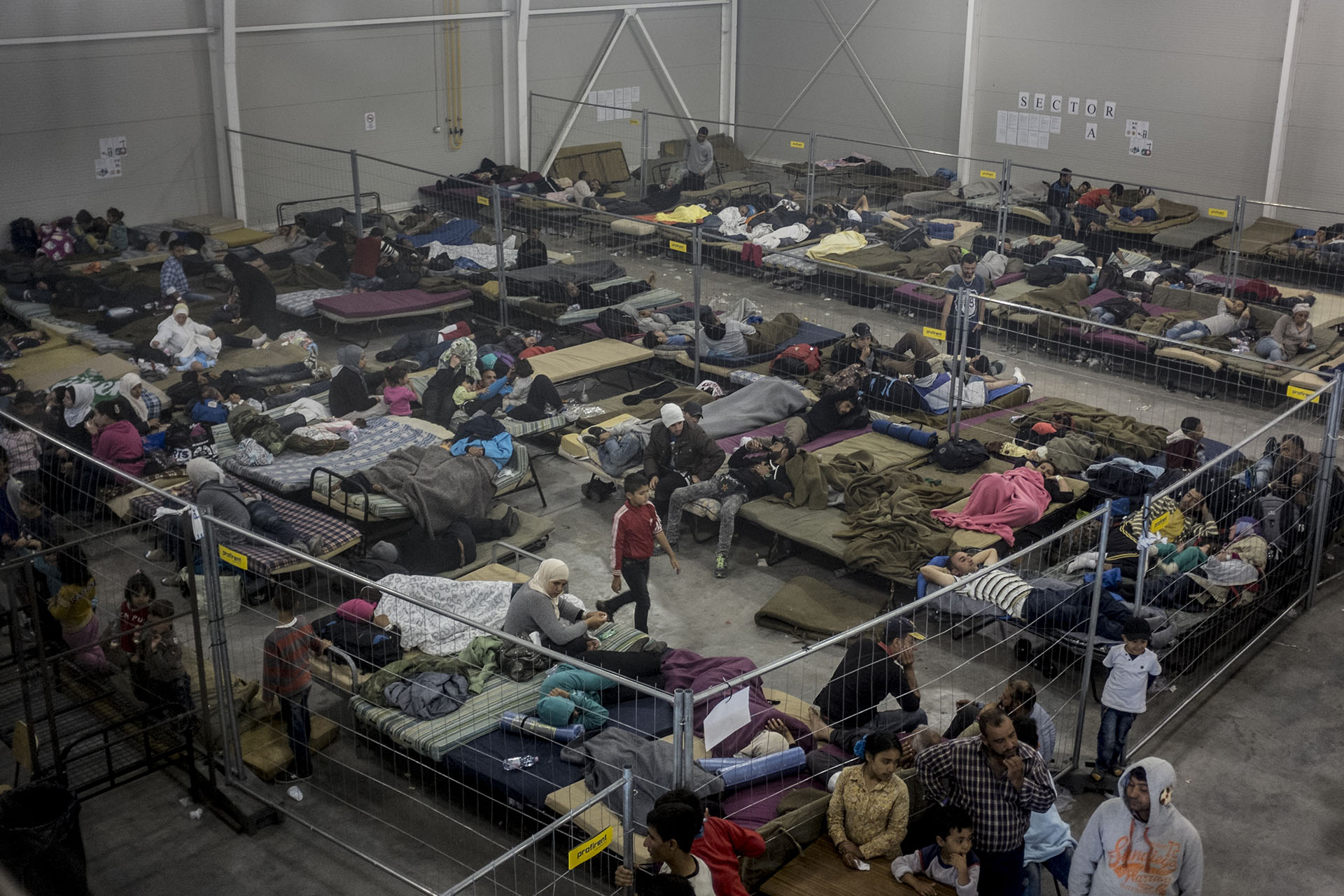 asylum seekers 8 Ice is now housing migrants and asylum seekers in federal prison june 8, 2018 tasos katopodis/getty images.